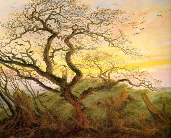 The Tree of Crows CGF